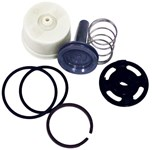3305043 El128a Sloan Valve Flush Valve Repair Kit CAT200P,3305043,03305043,67125404585,MFGR VENDOR: SLOAN,PRCH VENDOR: SS,671254045859