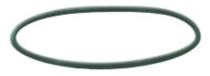 152032 (w10-or) Buna-n O-ring For All Heavy-duty Opaque Housings 1 In & 1-1/2 In Inlet/outlet CAT419A,0R100,W10OR,1523032,051678520321