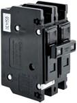 198313gs Ruud (briggs) 70 Amps 2 Pole Breaker CAT330R,198313GS,662766351545