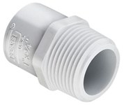 3/4 X 1 Pvc Sch 40 Male Adapter Mipt X S CAT462,04428,436102,30477,PMAFG,10054211131746,20054211131743,10611942083531,46208609,054211162590,039923131744,39923131744,054211131749,61194208353,