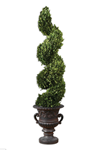 60094 D-w-o Preserved Boxwood Sprial Topiary CATOUTT,60094,